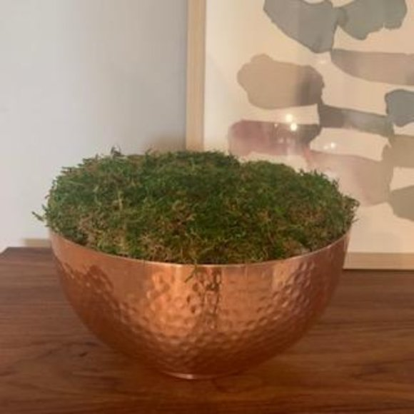 Copper Farmhouse Moss Bowl / Table Centerpiece